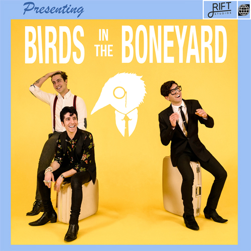 MUSIC REVIEW    Birds In The Boneyard