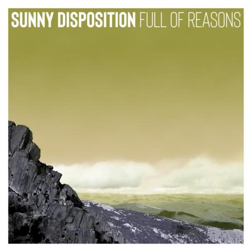 Full Of Reasons by Sunny Disposition